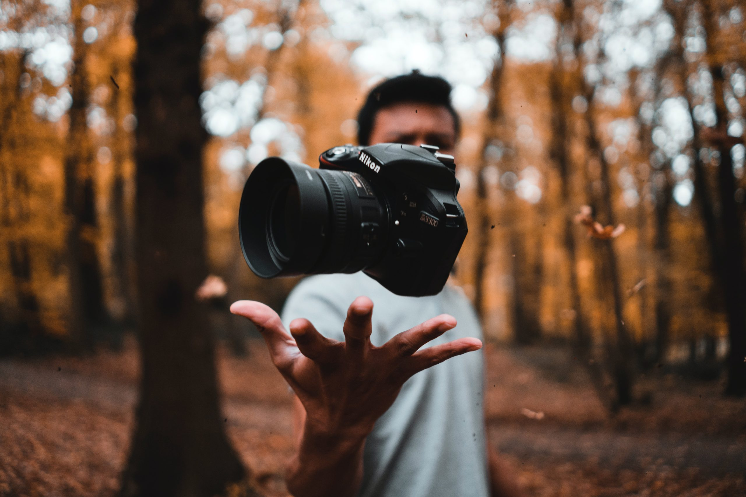 Perfect Photography: How To Make A Perfect Photograph