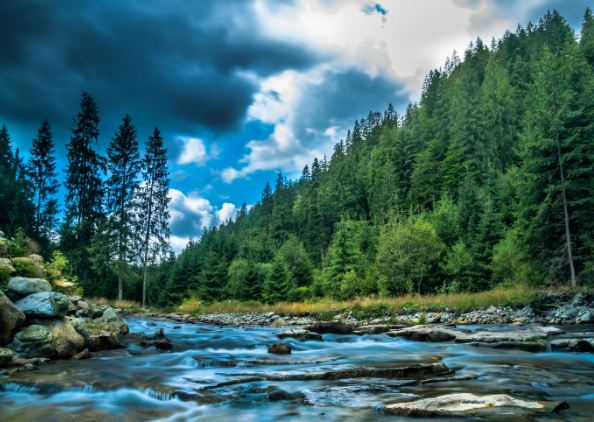 Nature Photography Tips For Beginners